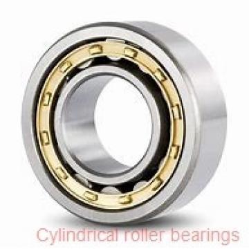 35 mm x 80 mm x 31 mm  FBJ NU2307 cylindrical roller bearings